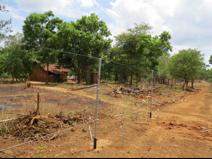 Het mens-olifant-conflict in Sri Lanka