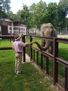 Olifantenverzorger Marjo Hoedemaker bezoekt Twiggy in Belgrado