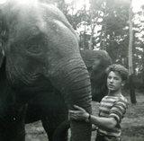 Marjo Hoedemaker Elephant Foundation