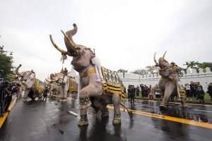 rouwrituelen met olifanten in Thailand-unnamed-1